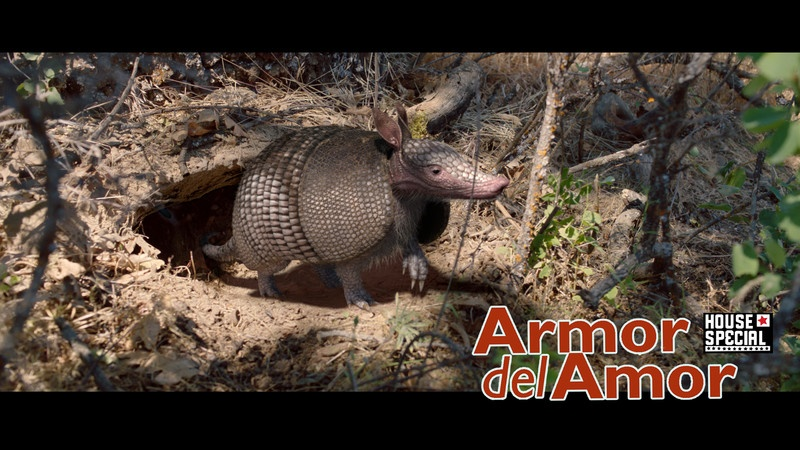 08-Armor-Del-Amor-Screenshot