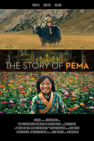 28-the-story-of-pema-poster